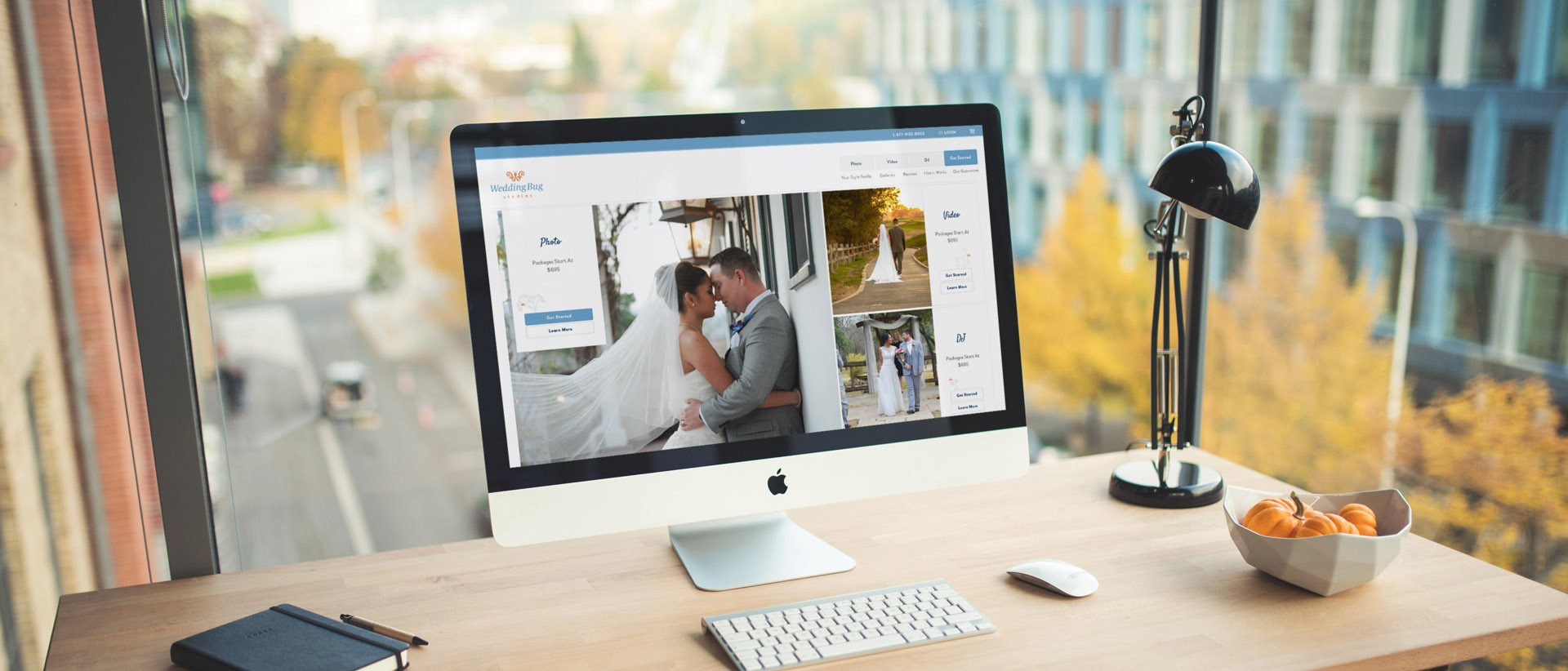 Wedding bug lyquix junglespirit Images